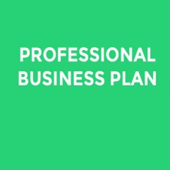 PROFESSIONAL BUSINESS PLAN